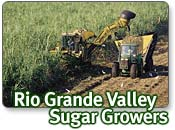 Rio Grande Valley Sugar Growers